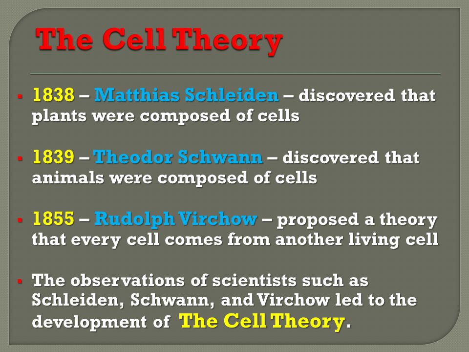 The Cell Theory 1838 – Matthias Schleiden – discovered that plants were composed of cells.