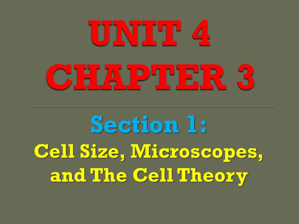 Cell Size, Microscopes, and The Cell Theory