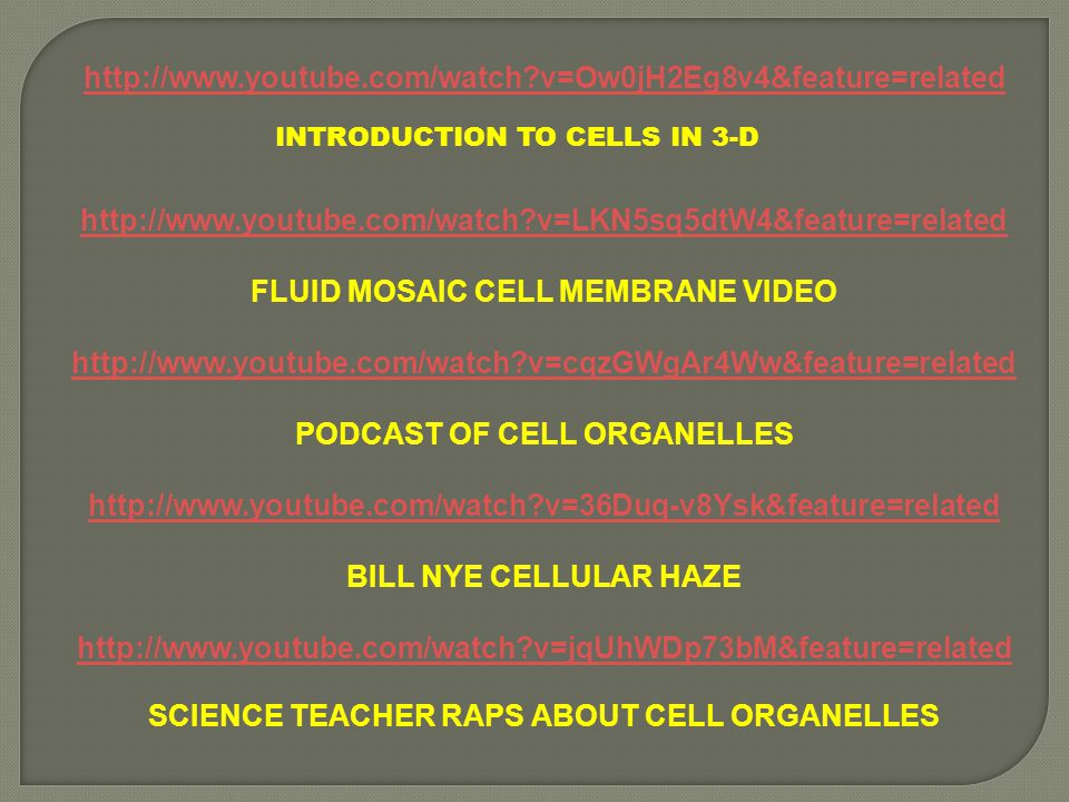 FLUID MOSAIC CELL MEMBRANE VIDEO