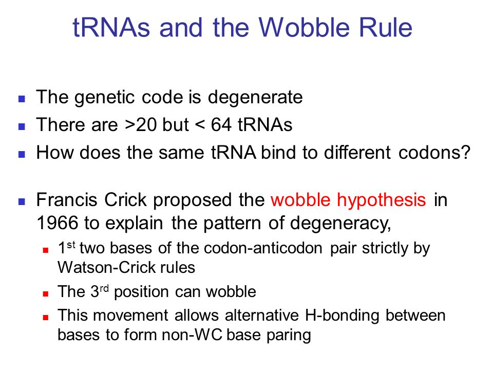 tRNAs and the Wobble Rule
