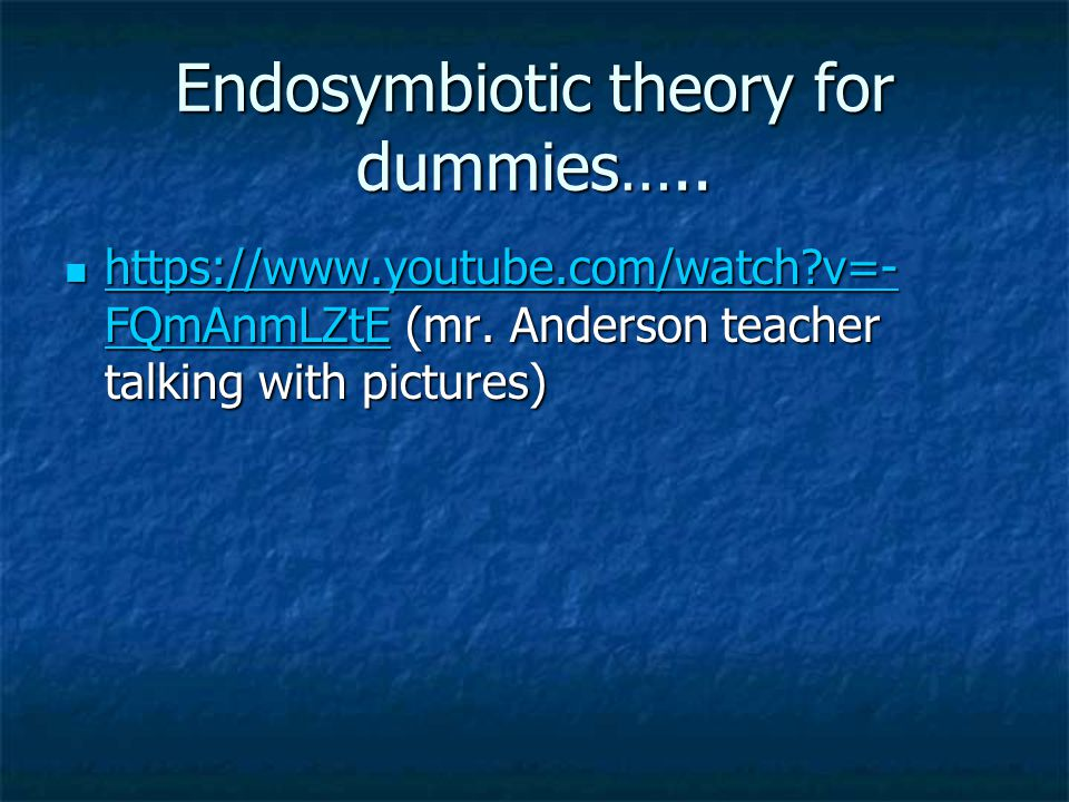 Endosymbiotic theory for dummies…..