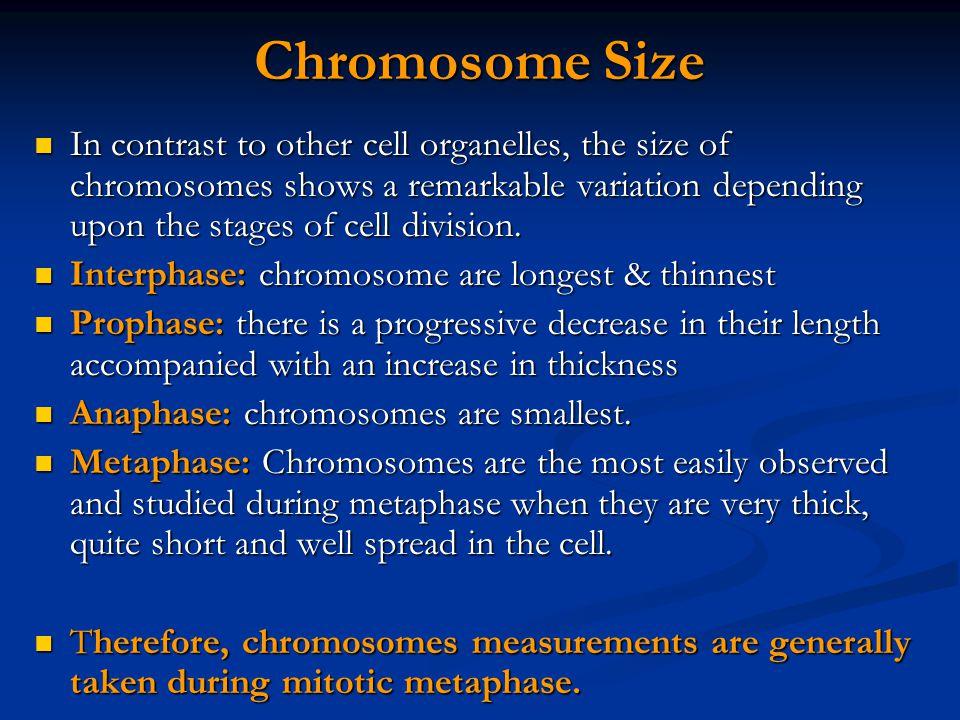 Chromosome Size