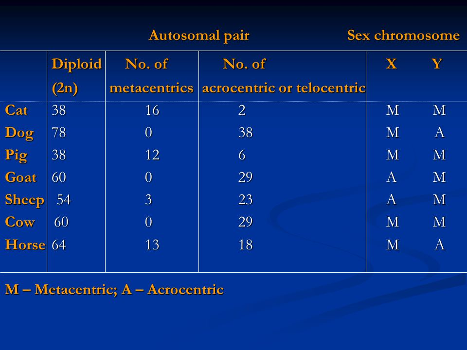 Diploid No. of No. of X Y Autosomal pair Sex chromosome