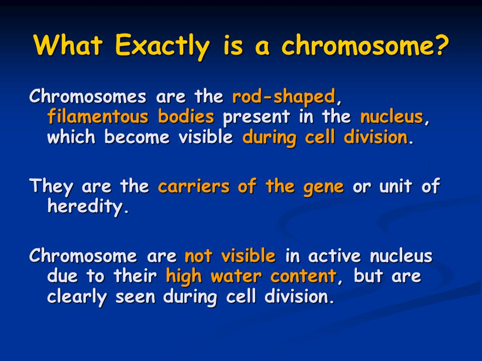 What Exactly is a chromosome