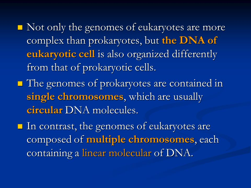 Not only the genomes of eukaryotes are more complex than prokaryotes, but the DNA of eukaryotic cell is also organized differently from that of prokaryotic cells.