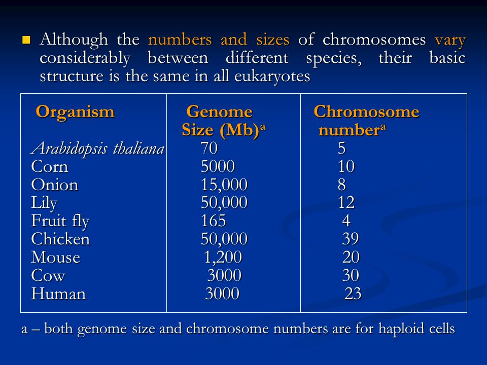 Organism Genome Chromosome Size (Mb)a numbera