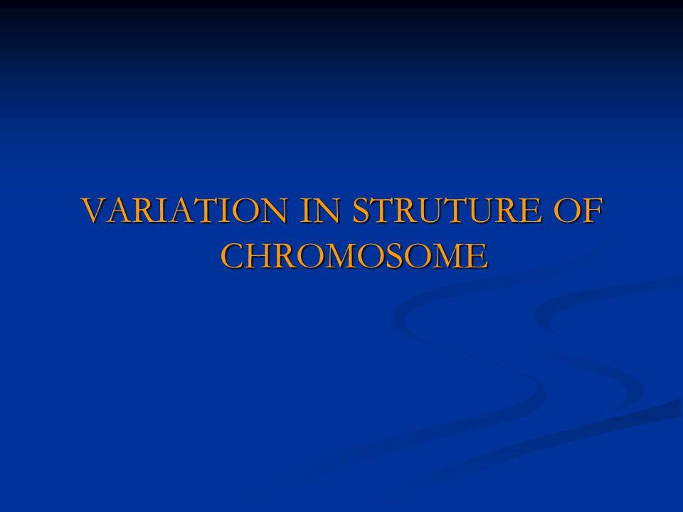 VARIATION IN STRUTURE OF CHROMOSOME