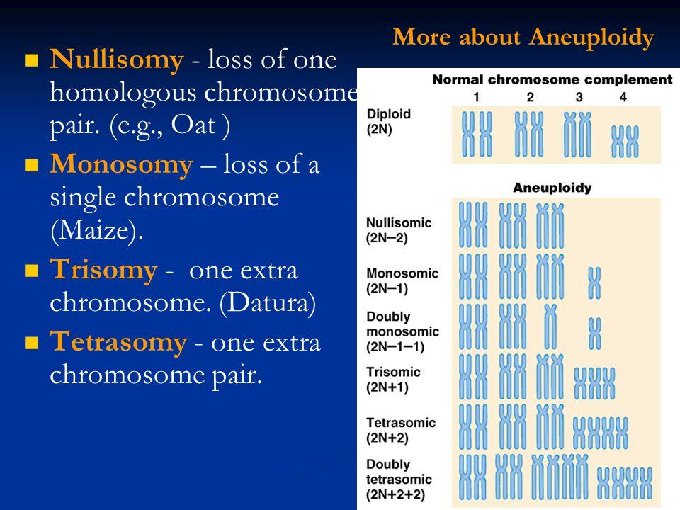 Nullisomy - loss of one homologous chromosome pair. (e.g., Oat )
