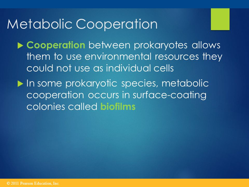 Metabolic Cooperation