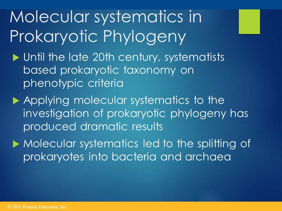 Molecular systematics in Prokaryotic Phylogeny
