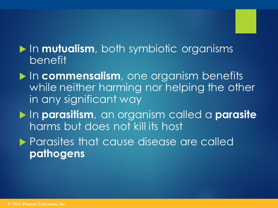 In mutualism, both symbiotic organisms benefit