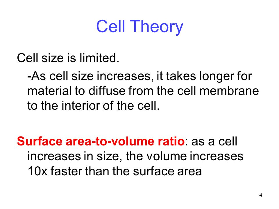 Cell Theory Cell size is limited.