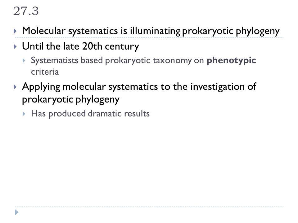 27.3 Molecular systematics is illuminating prokaryotic phylogeny
