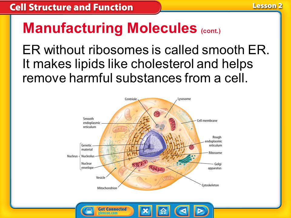 Manufacturing Molecules (cont.)