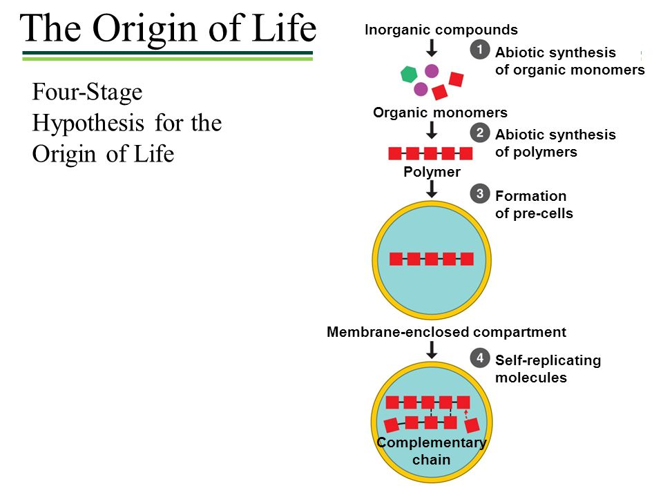 The Origin of Life Four-Stage Hypothesis for the Origin of Life
