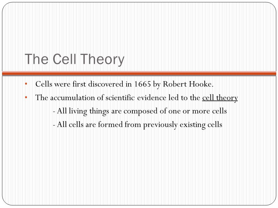 The Cell Theory Cells were first discovered in 1665 by Robert Hooke.