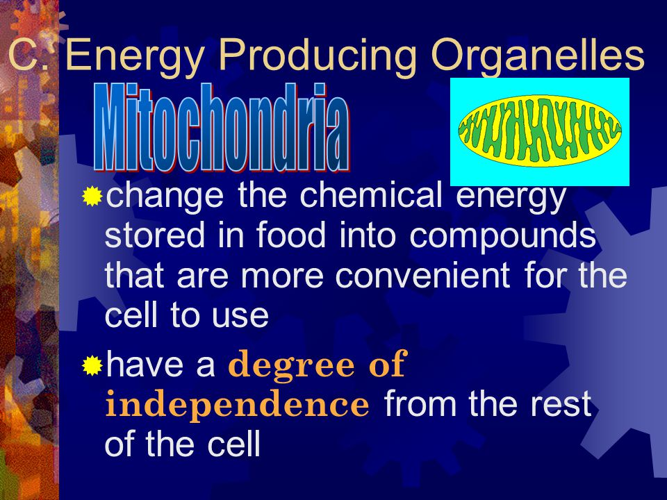 C. Energy Producing Organelles