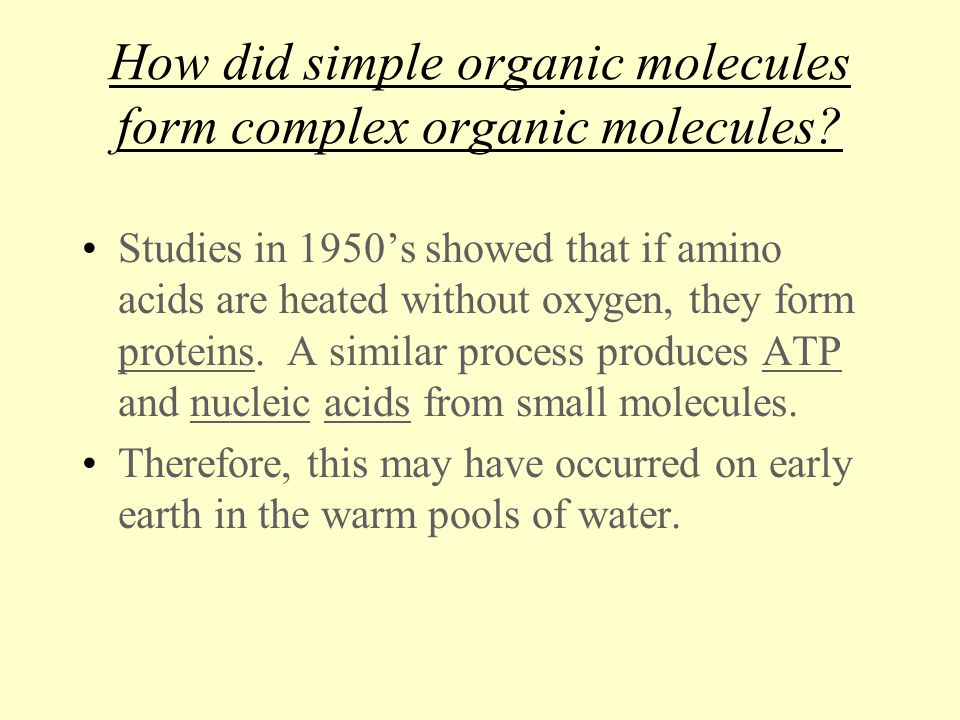 Ideas on the Origin of Life on Earth - ppt download