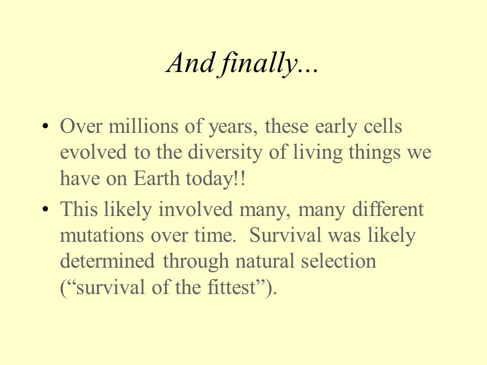 And finally... Over millions of years, these early cells evolved to the diversity of living things we have on Earth today!!