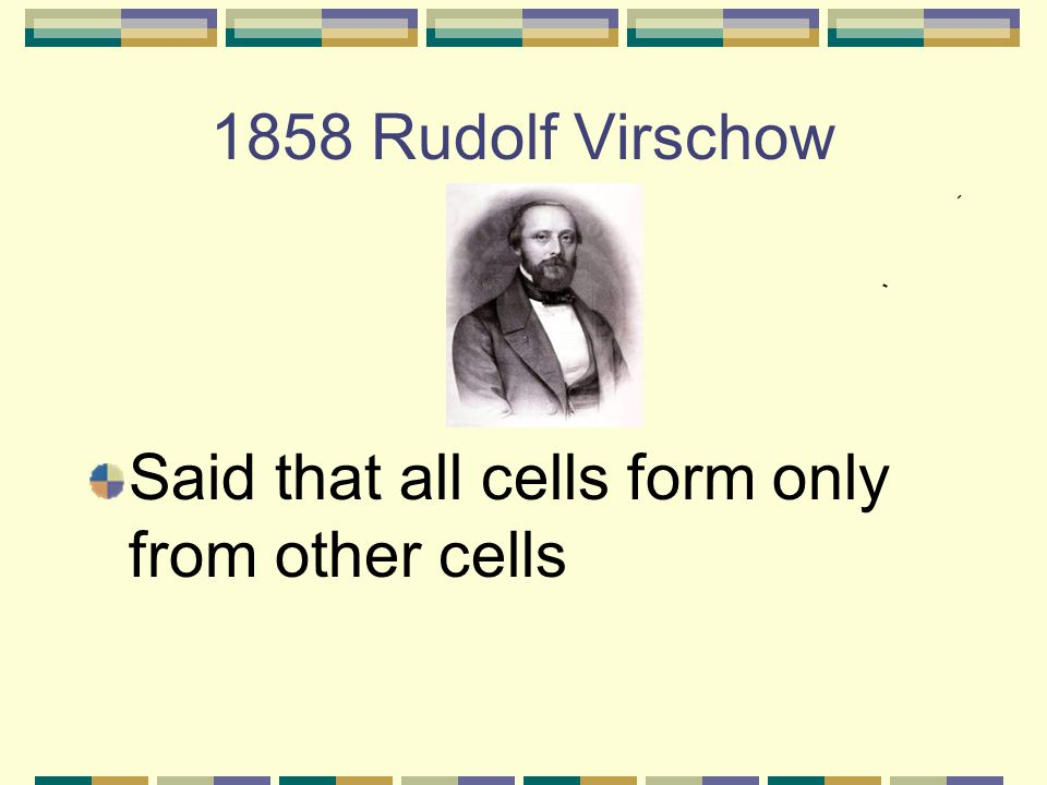 1858 Rudolf Virschow Said that all cells form only from other cells