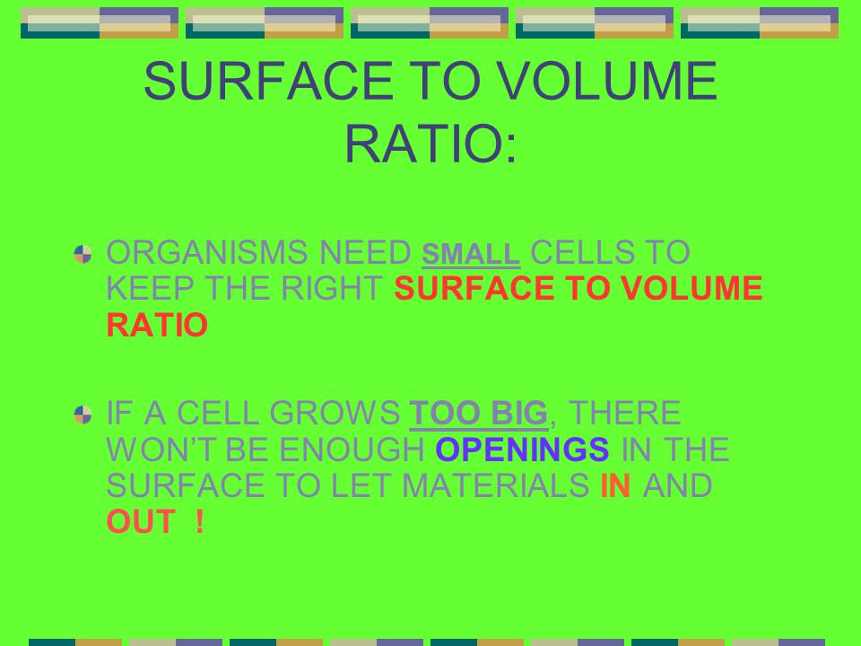 SURFACE TO VOLUME RATIO: