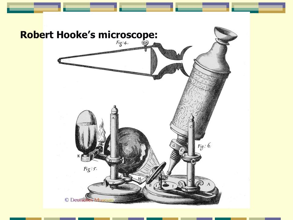 Robert Hooke's microscope:
