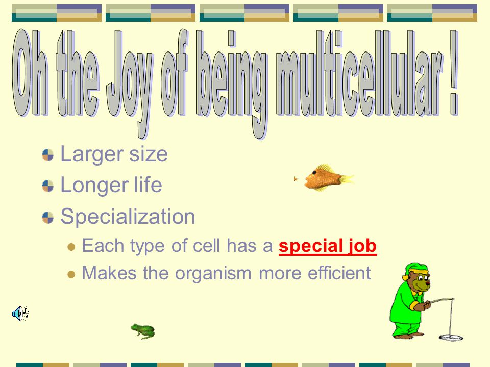 Oh the Joy of being multicellular !