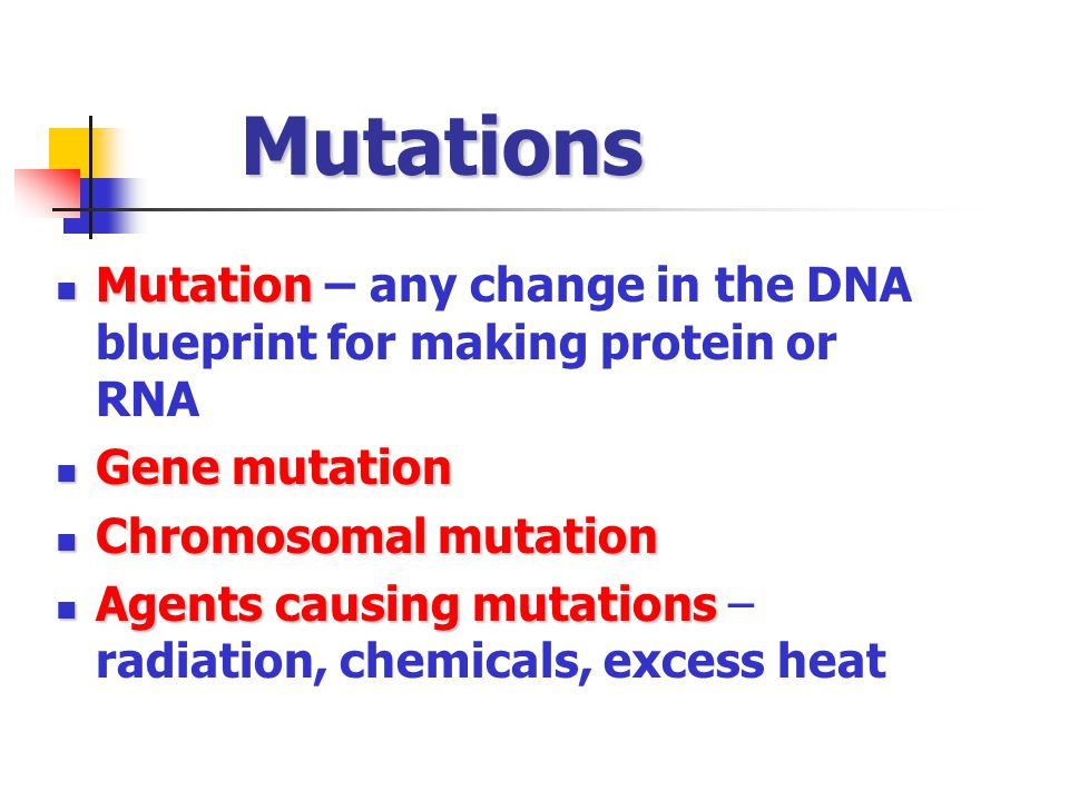 Mutations Mutation – any change in the DNA blueprint for making protein or RNA. Gene mutation. Chromosomal mutation.