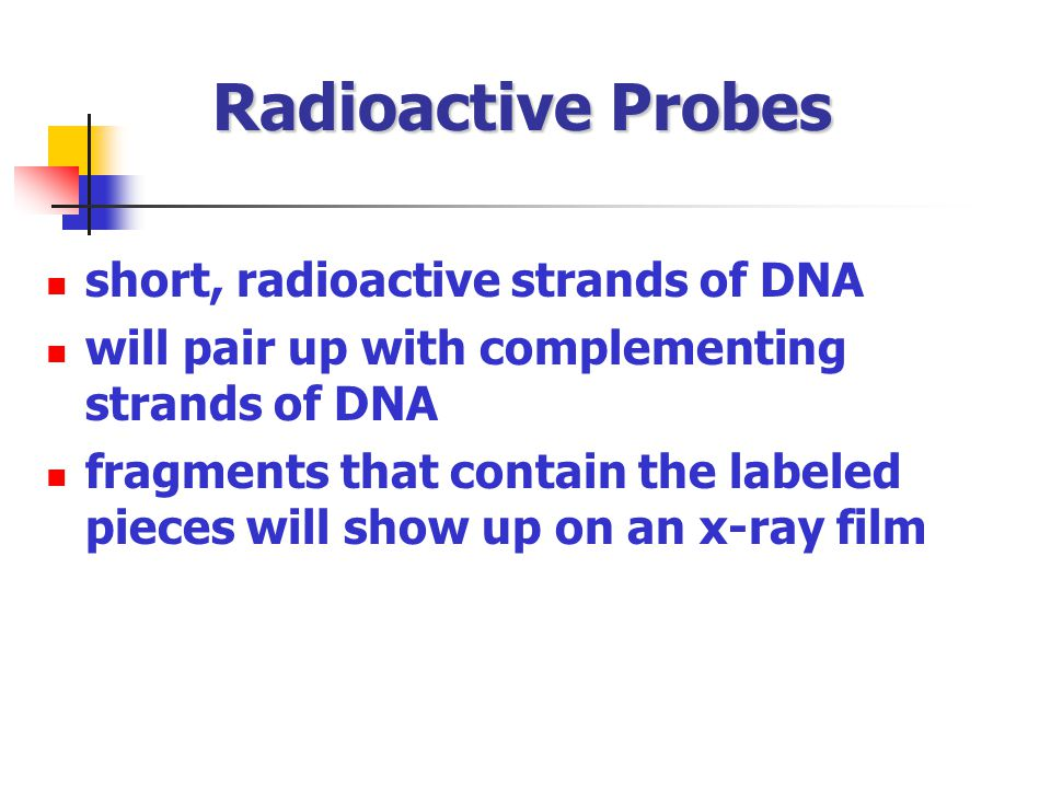Radioactive Probes short, radioactive strands of DNA