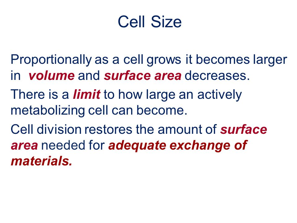 Cell Size Proportionally as a cell grows it becomes larger in volume and surface area decreases.