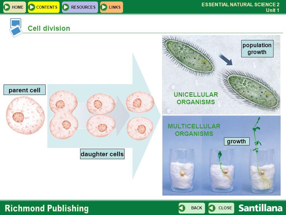 UNICELLULAR ORGANISMS MULTICELLULAR ORGANISMS