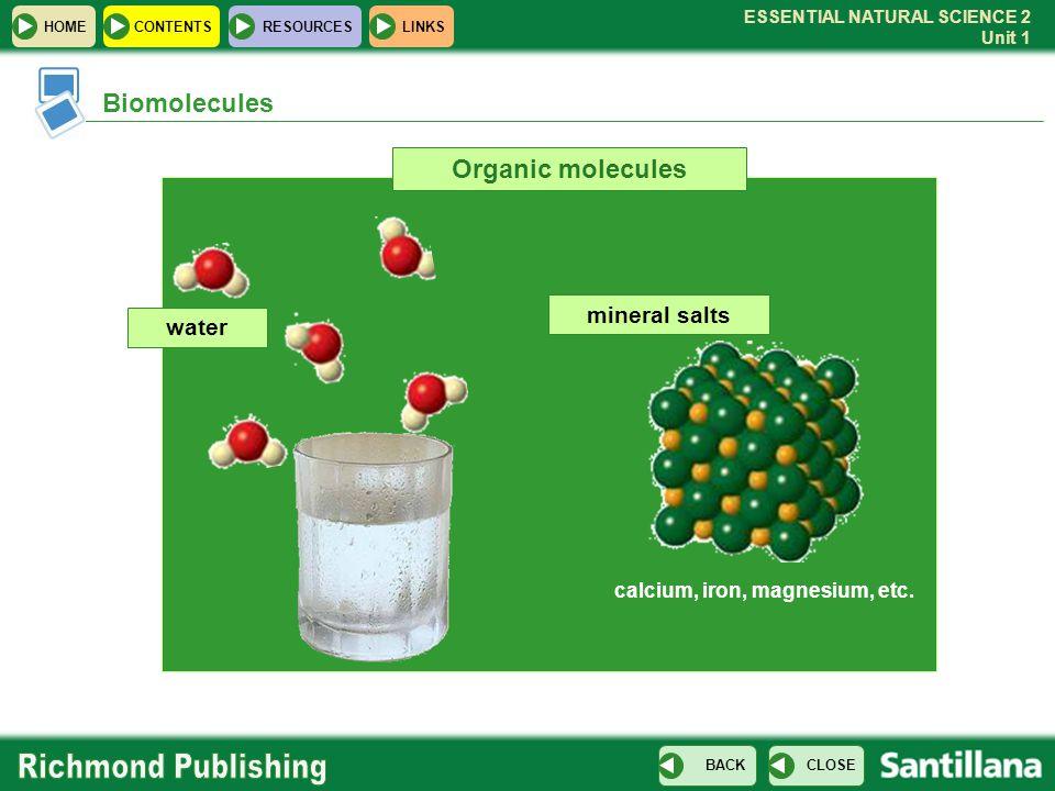 Biomolecules Organic molecules mineral salts water