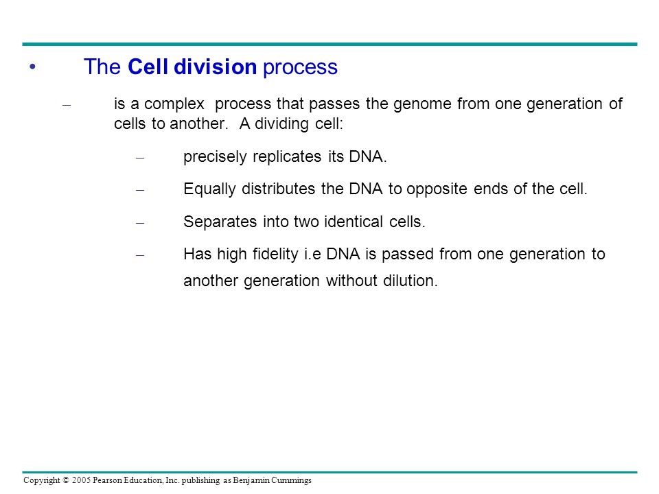 The Cell division process