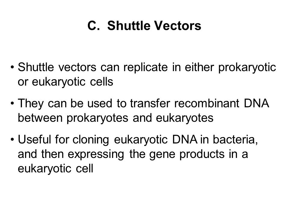C. Shuttle Vectors Shuttle vectors can replicate in either prokaryotic or eukaryotic cells.