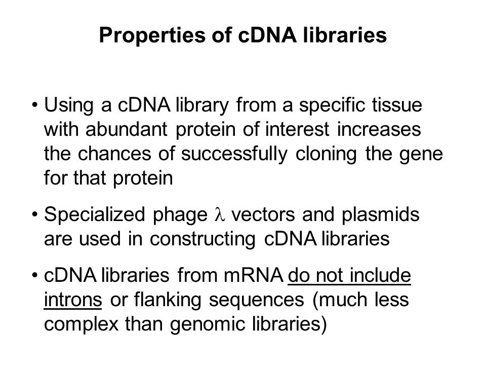 Properties of cDNA libraries