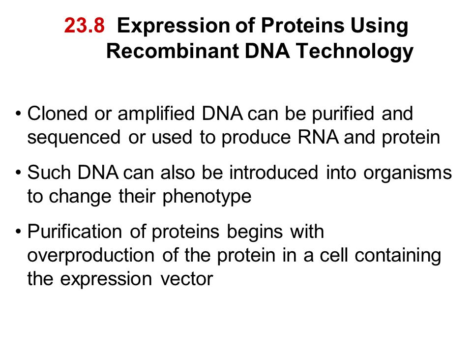 23.8 Expression of Proteins Using Recombinant DNA Technology