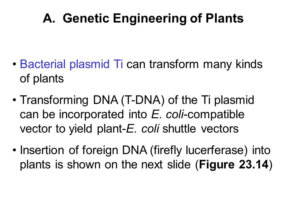A. Genetic Engineering of Plants
