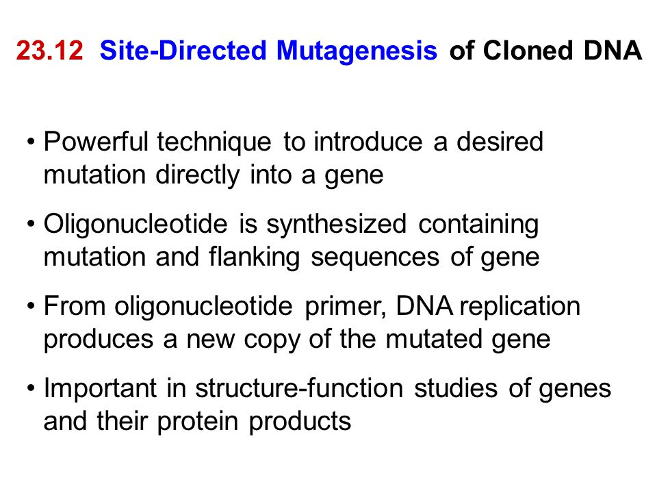 23.12 Site-Directed Mutagenesis of Cloned DNA