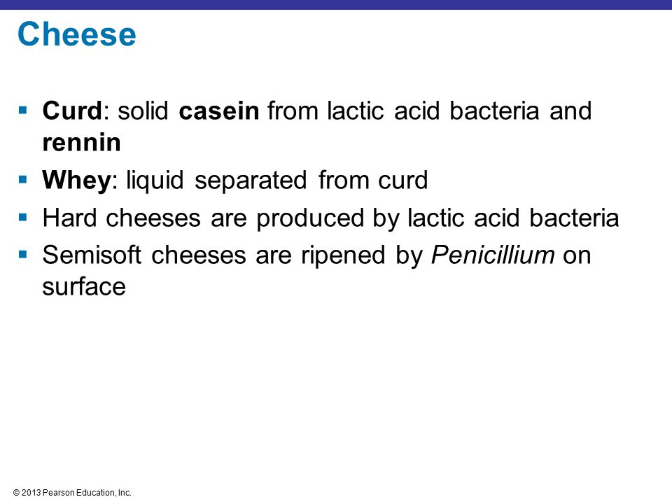 Cheese Curd: solid casein from lactic acid bacteria and rennin