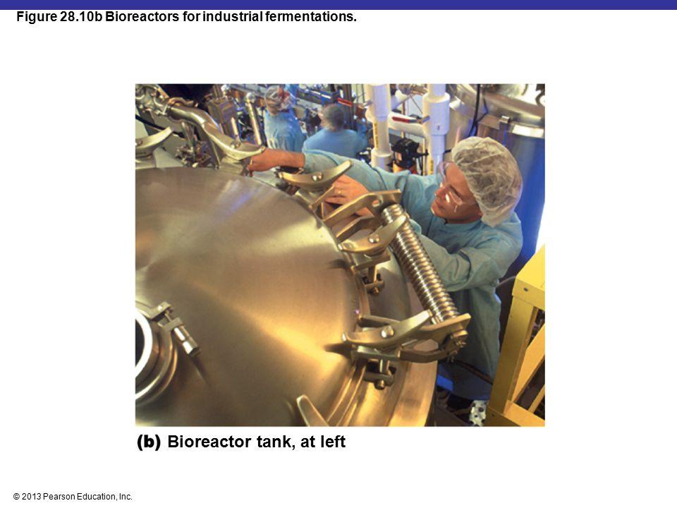 Bioreactor tank, at left