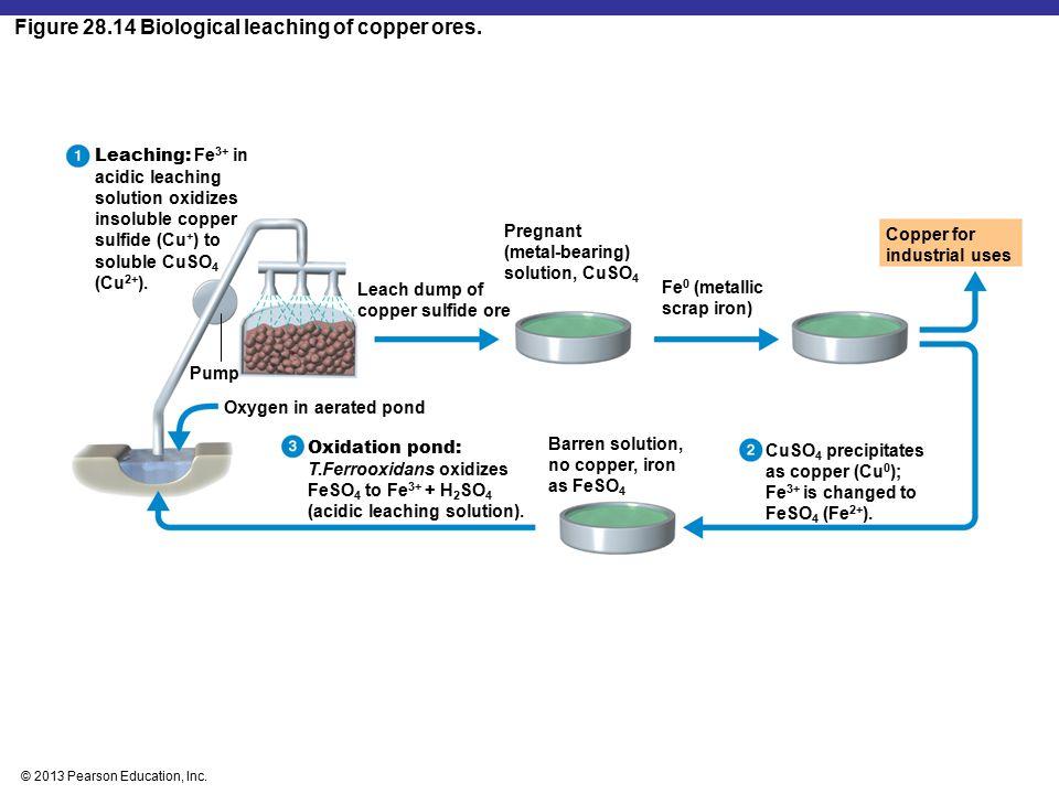 Figure 28.14 Biological leaching of copper ores.