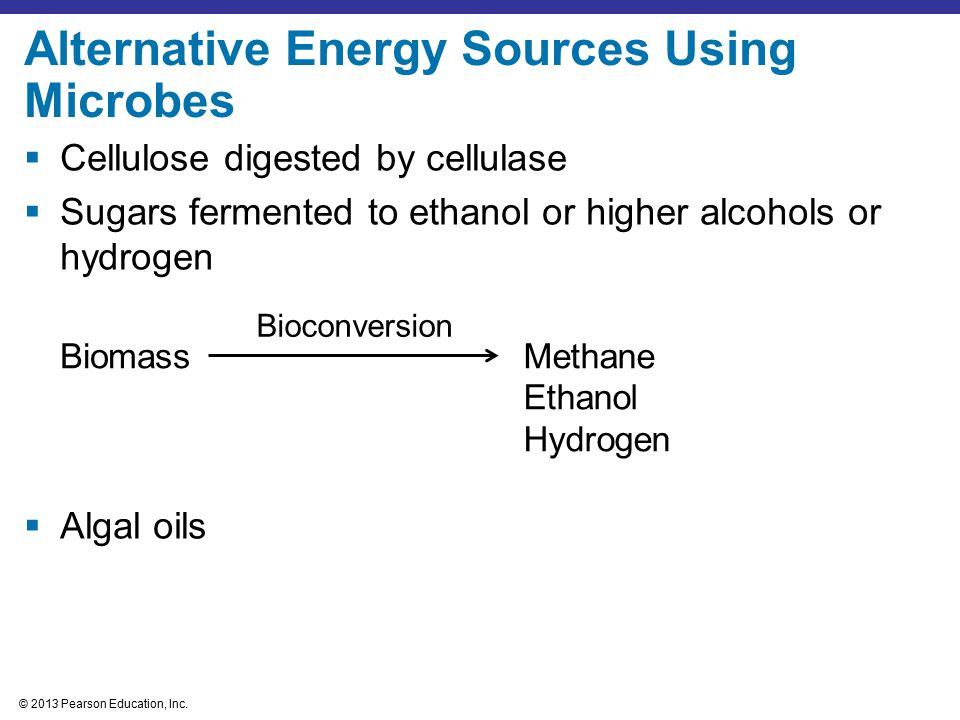 Alternative Energy Sources Using Microbes