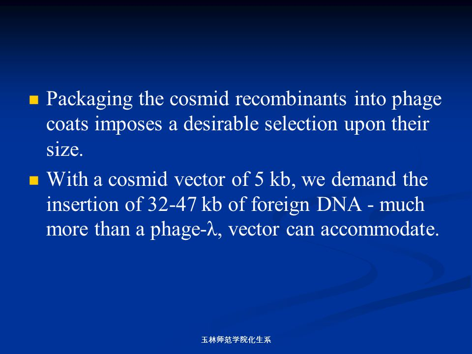 Packaging the cosmid recombinants into phage coats imposes a desirable selection upon their size.