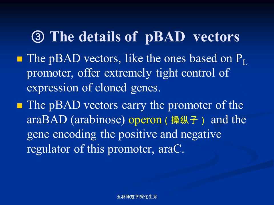 ③ The details of pBAD vectors