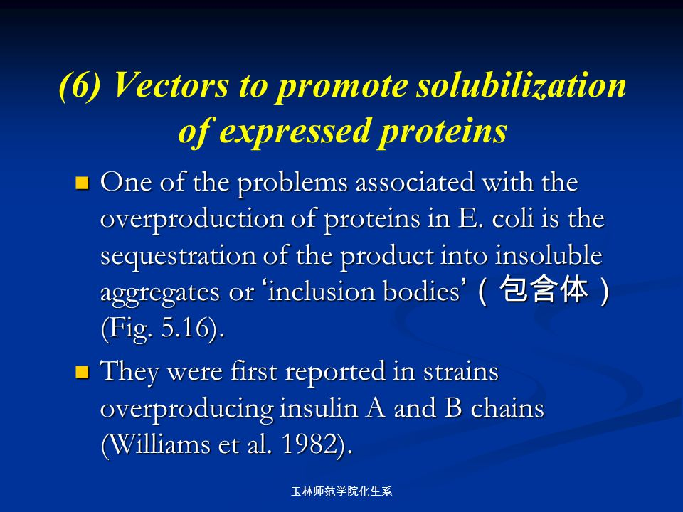 (6) Vectors to promote solubilization of expressed proteins