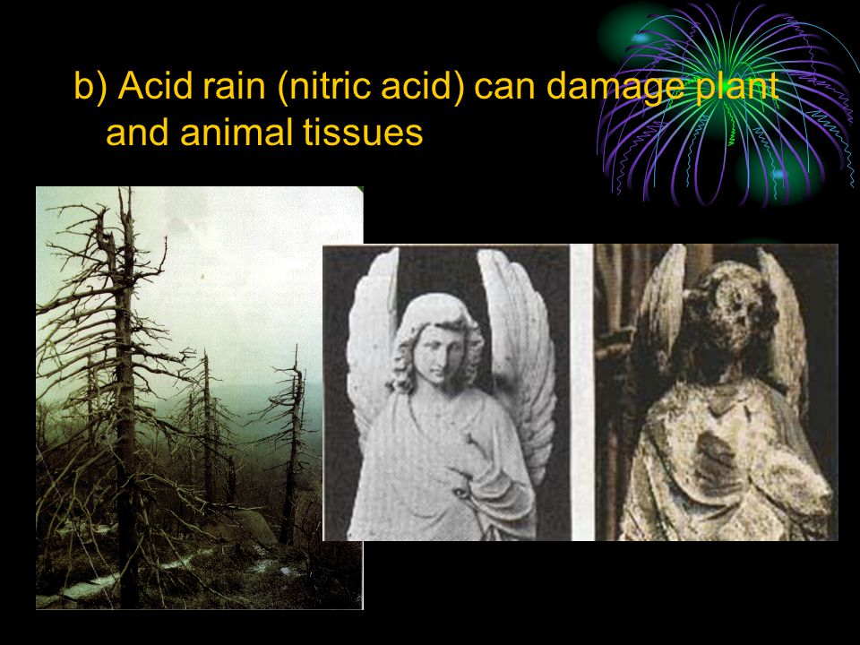 b) Acid rain (nitric acid) can damage plant and animal tissues