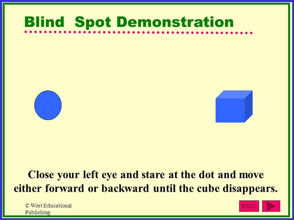 Blind Spot Demonstration