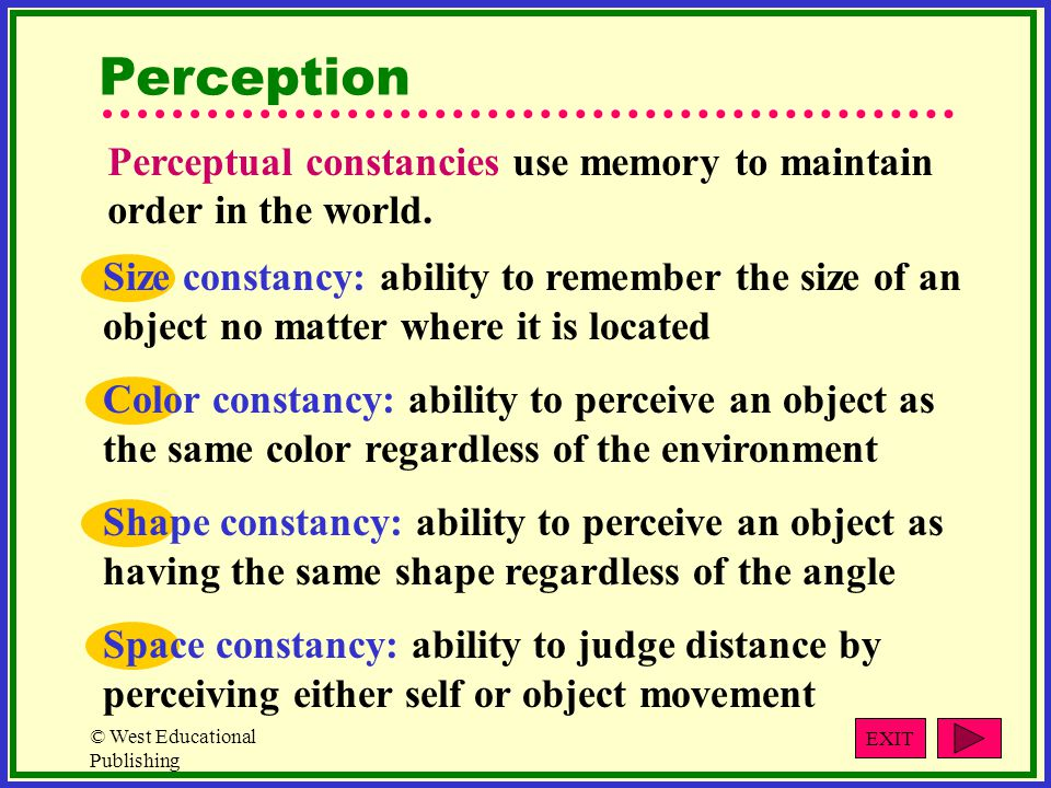 Perception Perceptual constancies use memory to maintain order in the world.