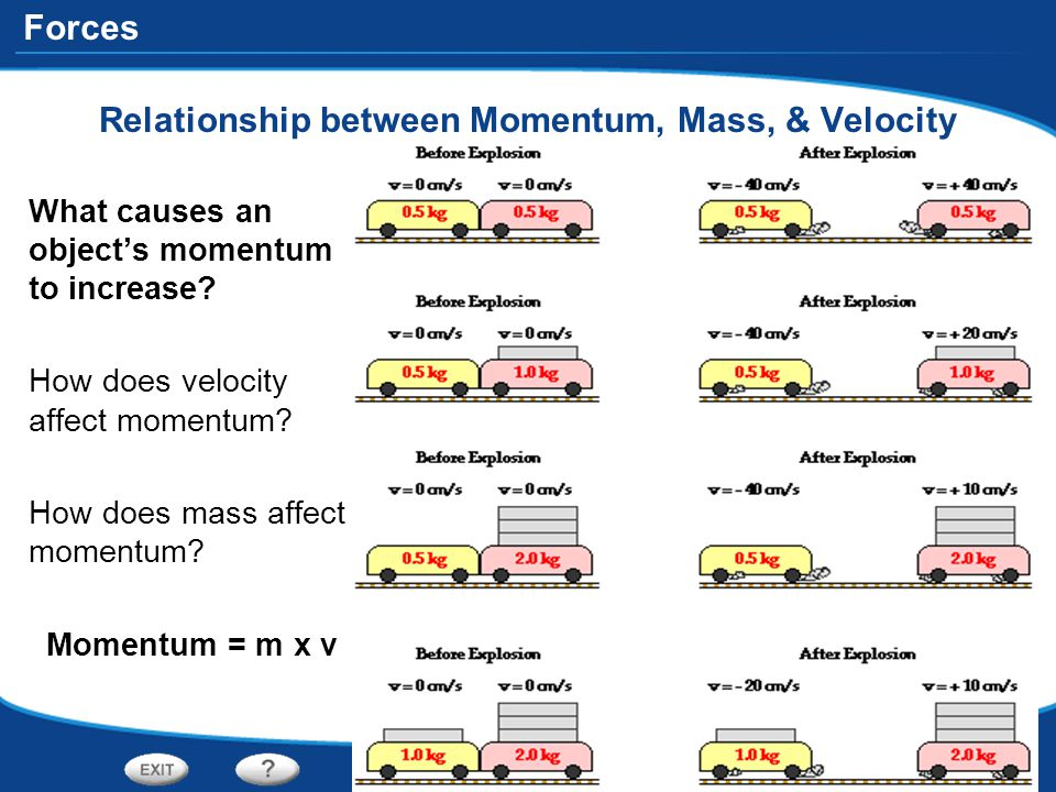 Relationship between Momentum, Mass, & Velocity