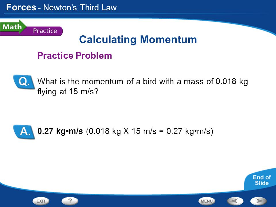 Calculating Momentum Practice Problem - Newton's Third Law